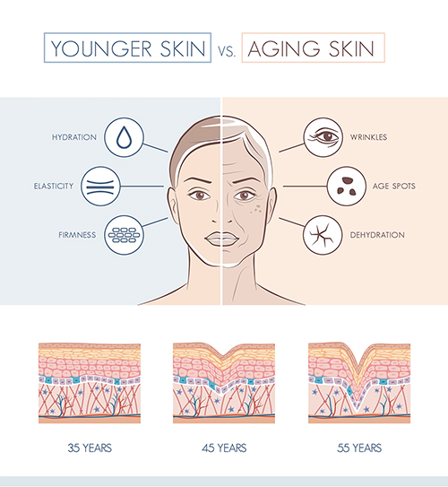 illustrating the differences between younger skin vs aging skin